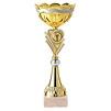 Plaatje overwinning goud - 356552