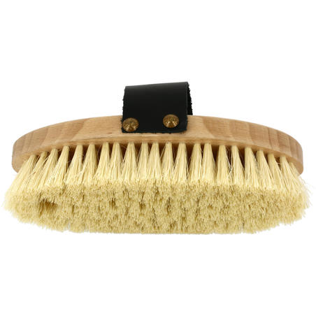 Sentier Wooden Short Bristle Horseback Riding Dandy Brush