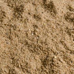Lokaasvissen met vaste hengel Gooster zeelt 2 kg - 367235