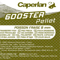Tabletas pesca de la carpa GOOSTER FISH FRESA 8 mm 5 kg