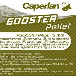 Tabletas pesca de la carpa GOOSTER FISH STRAWBERY 15 mm 5 kg