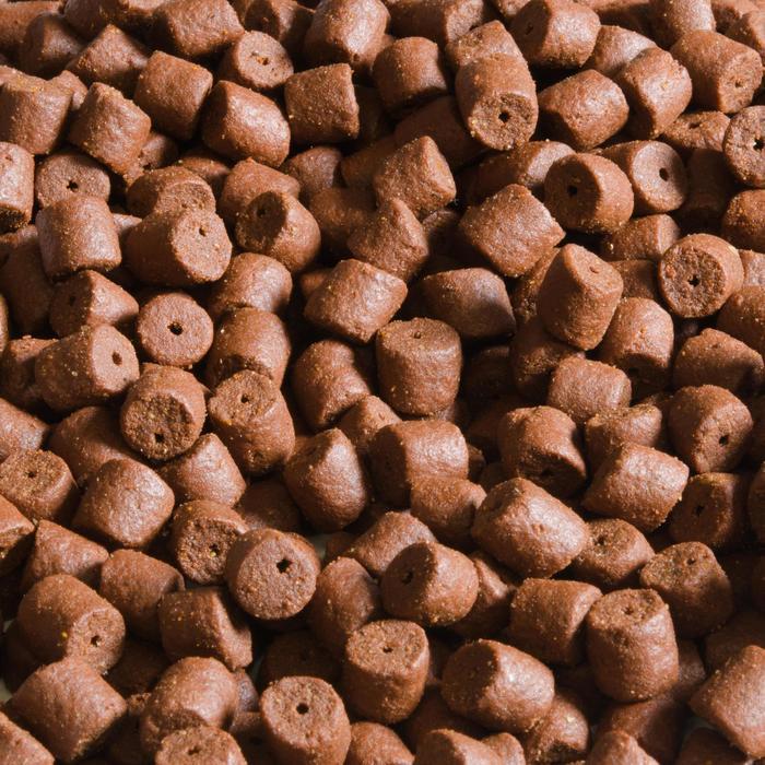 Pellets voor karpervissen Gooster met vis en aardbei 8 mm 5 kg