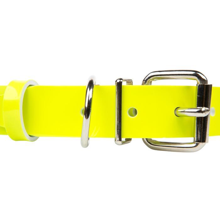 Hundehalsband Keiler gelb
