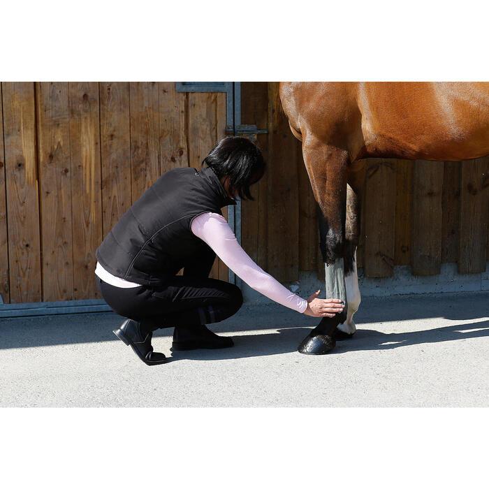 Argile rafraîchissante équitation cheval et poney 2,5 KG