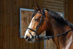Pelhamriempjes ruitersport zwart - maat pony en paard - 375770