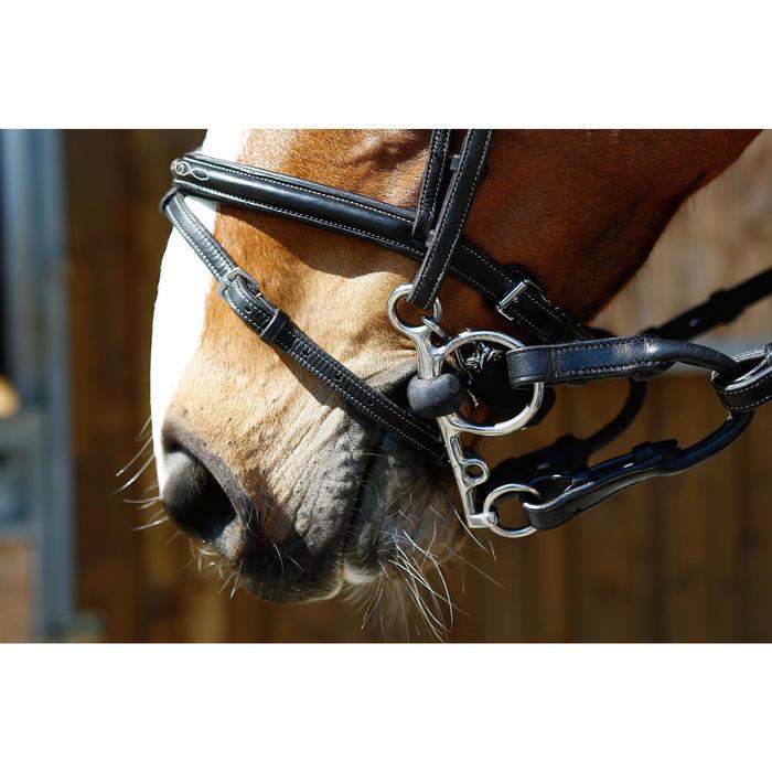 Alliances de pelham cheval et poney équitation marron