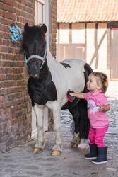 Rijbroek voor ponyrijden - 396841