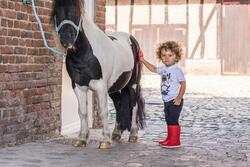 Rijbroek voor ponyrijden - 396843