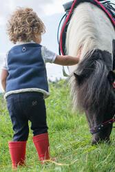 Rijbroek voor ponyrijden - 396854