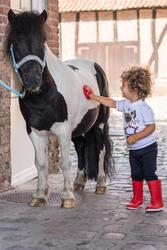 Rijbroek voor ponyrijden - 396860