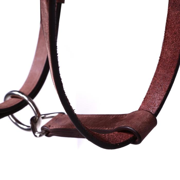 Bridon licol + rênes équitation randonnée ESCAPE marron - taille cheval - 39705