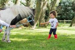 Rijbroek voor ponyrijden - 397200