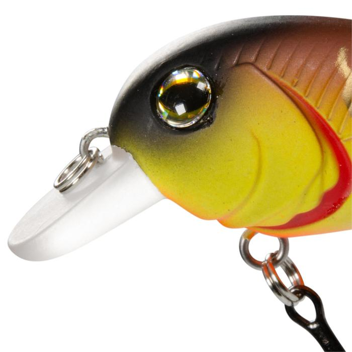 poisson nageur pêche LUD 45 BROWN TIGER - 402714