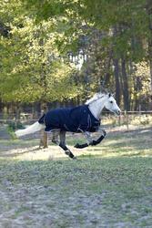 Buitendeken Allweather 300 1.000 D kastanjebruin - pony en paard - 406230