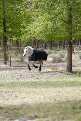 Buitendeken Allweather 300 1.000 D kastanjebruin - pony en paard - 406231
