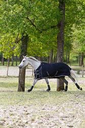 Buitendeken Allweather 300 1.000 D kastanjebruin - pony en paard - 406232