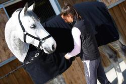 Staldeken Polar 200 zwart - pony en paard - 406322
