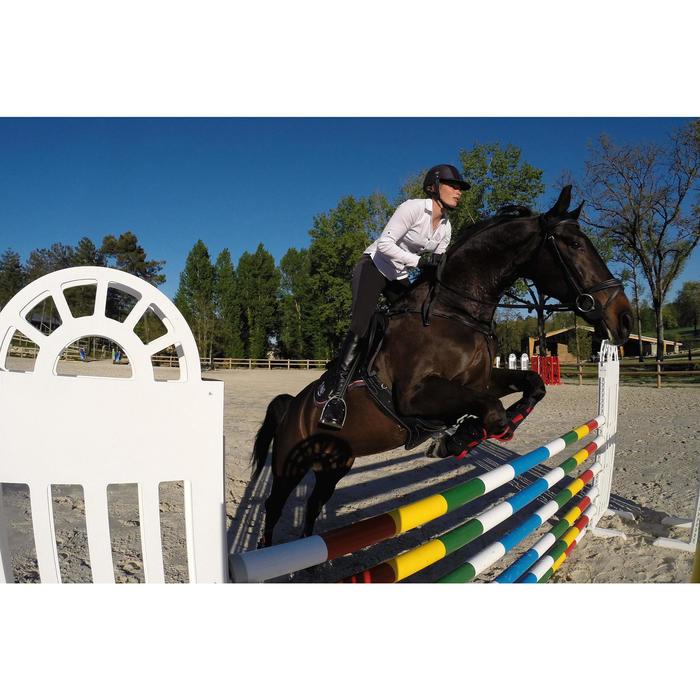Filet + rênes équitation cheval et poney EDIMBURGH - 414980