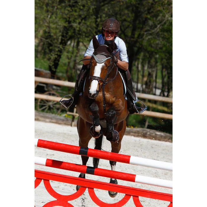 Filet + rênes équitation cheval et poney EDIMBURGH - 414982