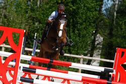 Hoofdstel + teugels Edimburgh ruitersport - pony en paard - 414986