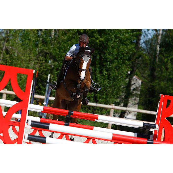Filet + rênes équitation cheval et poney EDIMBURGH - 414986