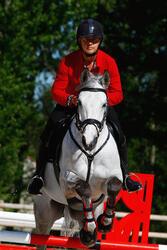 Hoofdstel + teugels Edimburgh ruitersport - pony en paard - 414987