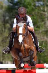Hoofdstel + teugels Edimburgh ruitersport - pony en paard - 414989