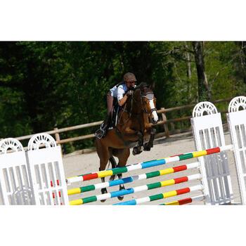 Filet + rênes équitation cheval et poney EDIMBURGH - 414990