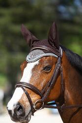 Hoofdstel + teugels Edimburgh ruitersport - pony en paard - 414991