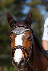 Hoofdstel + teugels Edimburgh ruitersport - pony en paard - 414996