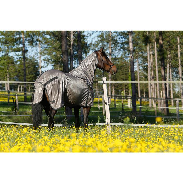 Cabestro equitación poni y caballo SCHOOLING marrón