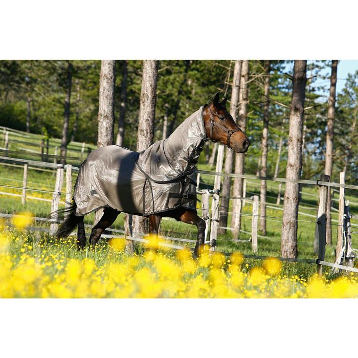 Halster Schooling ruitersport paard en pony bruin