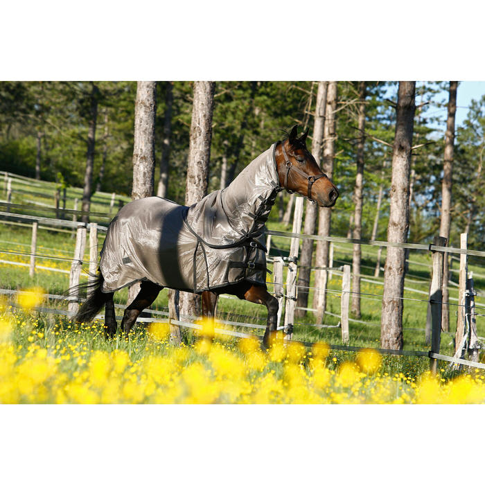 Licol équitation poney et cheval SCHOOLING - 415116