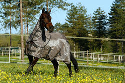 Halster Schooling ruitersport turquoise - pony of paard - 415117