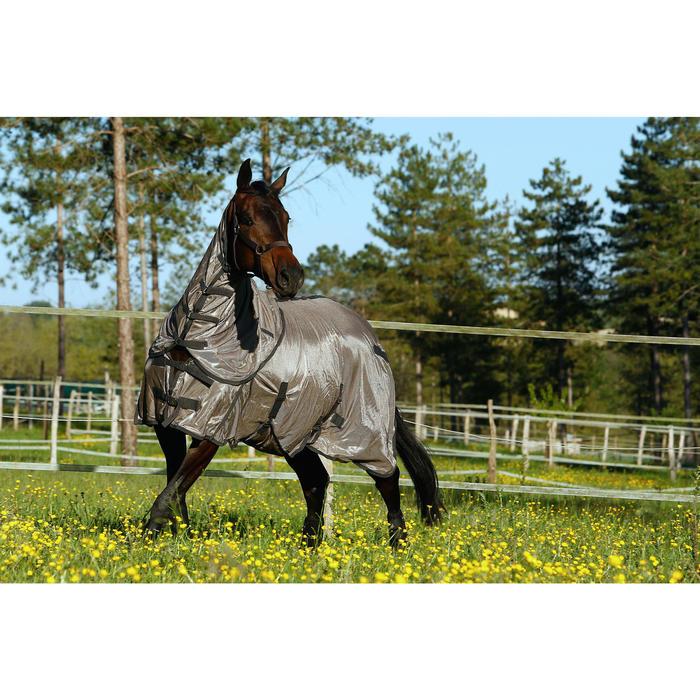 Licol équitation poney et cheval SCHOOLING - 415117