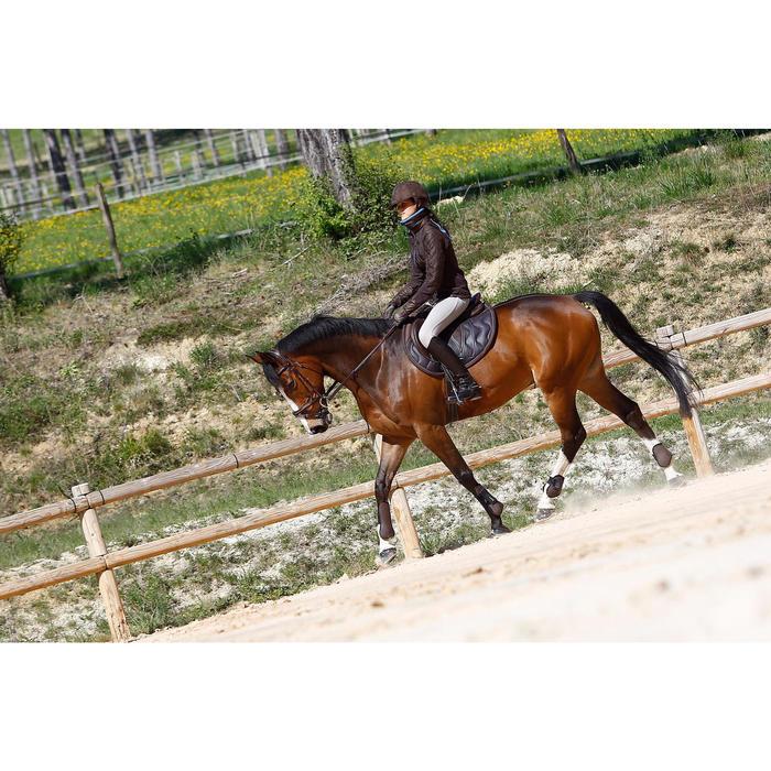 Filet + rênes équitation cheval et poney TINCKLE marron - 416140