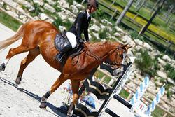 Hoofdstel + teugels Tinckle ruitersport bruin - pony en paard - 416142