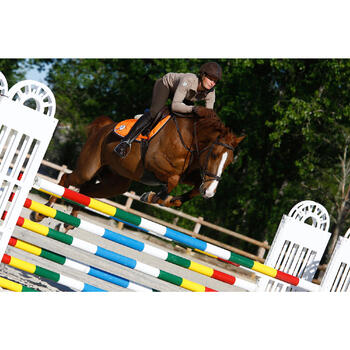 Filet + rênes équitation RECALL - poney et cheval - 416982