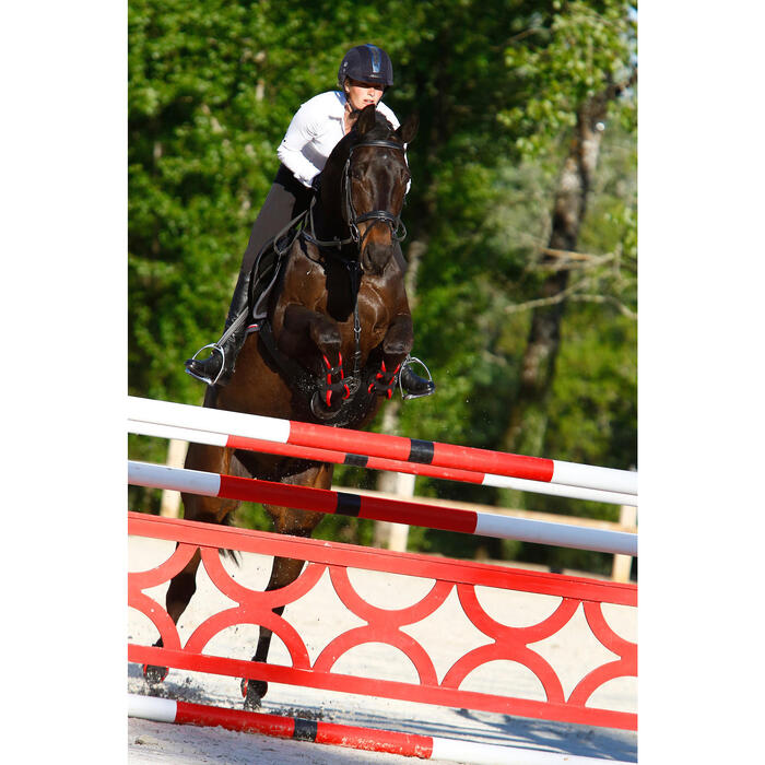 Filet + rênes équitation RECALL - poney et cheval - 416985