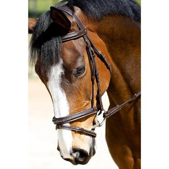 Filet + rênes équitation RECALL - poney et cheval - 416990