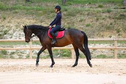 Slofteugels leer en koord ruitersport Romeo - 417015