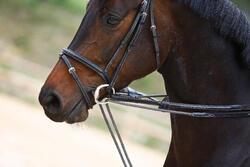 Slofteugels leer en koord ruitersport Romeo - 417016