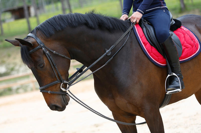 Riendas Alemanas de equitación cuero y cuerda caballo ROMEO negras