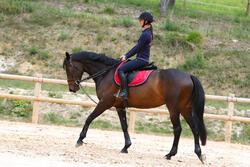 Slofteugels leer en koord ruitersport Romeo - 417018