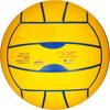 Volleybal V100 - 418570