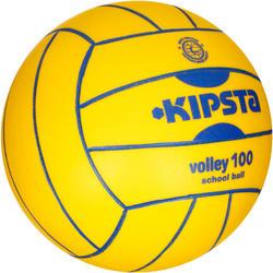Volleybal V100 - 418572