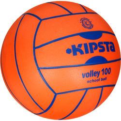 Volleybal V100 - 418583