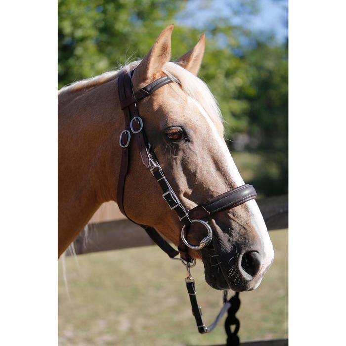 Bridon licol + rênes équitation randonnée ESCAPE marron - taille cheval - 419556