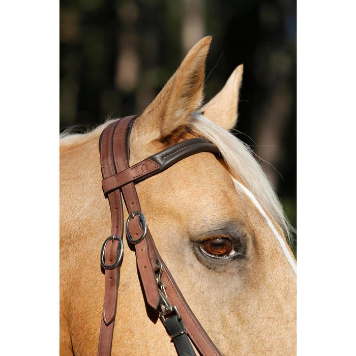 Set hoofdstel en halster + teugels ruitersport paard wandeltochten Escape bruin
