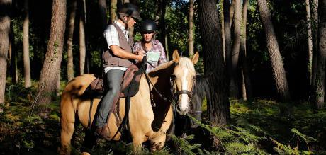 Alt/comment-choisir-sa-selle-d-equitation-randonnée